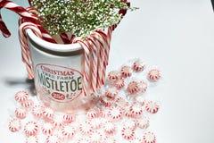 Распространите некоторое приветственное восклицание рождества стоковое изображение rf