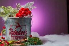 Распространите некоторое приветственное восклицание рождества стоковое фото
