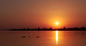 Распространять захода солнца светлый над прудом Стоковые Изображения RF