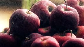 Распыляя вода над свежими зрелыми красными яблоками на деревянном столе акции видеоматериалы