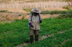 Распылять пестицидов Стоковые Фотографии RF