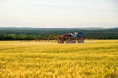 Распыляя поля удобрения с пшеницей Стоковое Изображение RF