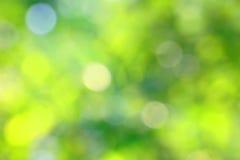 Расплывчатая зеленая предпосылка Стоковые Изображения RF