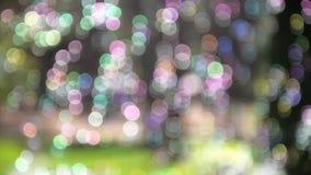 Расплывчатые пузыри мыла в парке акции видеоматериалы