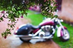 Расплывчатый мотоцикл в дожде и цветках Стоковые Изображения