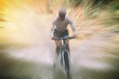 Расплывчатый спорта Одноколейный путь катания велосипедиста горного велосипеда и c Стоковые Изображения