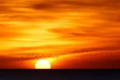 рассветает день новый Стоковые Фото