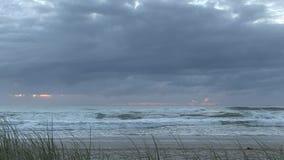 Рассветайте на пляже ` s Elston, aka ` рая ` s серфера ` видеоматериал