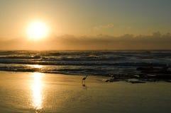 Рассветающ на пляже Torres, Бразилия стоковое изображение