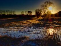 Рассвет болота в ноябре стоковые фото