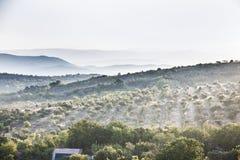 Рассвет в горной области Стоковая Фотография