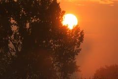 Рассвет лета с солнцем Стоковое Фото