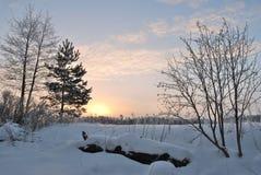 Рассвет зимы в Финляндии Стоковое фото RF