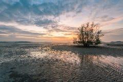 Рассвет над mudflats стоковая фотография