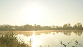 Рассвет на timelapse озера сток-видео