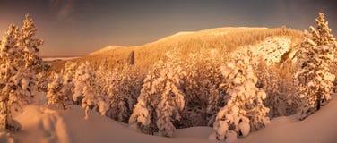 Рассвет приполюсной ночи Стоковое Фото