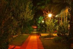 рассвет садовничает тропа pre Стоковая Фотография RF