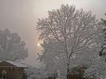 Рассвет Snowy Стоковые Изображения RF