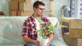 Рассерженный человек и цветок сидя на кресле и рассматривая его новую современную квартиру видеоматериал