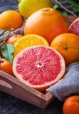Рассеченные свежие фрукты Апельсин, грейпфрут и tangerines Стоковое Изображение