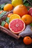 Рассеченные свежие фрукты Апельсин, грейпфрут и tangerines Стоковые Изображения