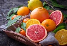 Рассеченные свежие фрукты Апельсин, грейпфрут и tangerines Стоковые Фото