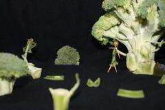 Рассказ зеленого цвета Стоковые Фотографии RF