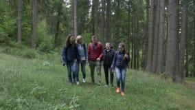 Расслабленные предназначенные для подростков hikers идя через древесины на горной тропе наслаждаясь красотой ландшафта и говорить видеоматериал