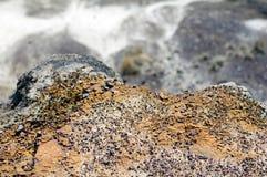 Рассматривать край в каньон стоковая фотография rf