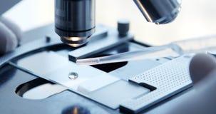 Рассматривать образца испытания под микроскопом в лаборатории видеоматериал