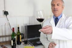 рассматривая стеклянное вино oenologist Стоковые Фото