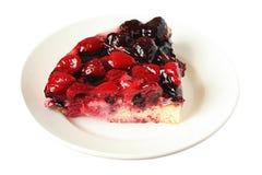 расстегай ягоды Стоковые Фото