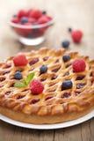 расстегай ягоды Стоковая Фотография