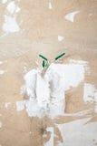 Расстегнутая электророзетка AC в стене Стоковое Изображение