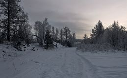 Расстояние вечера зимы морозное стоковое фото rf