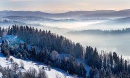 Расстояние в зимнем времени стоковое фото