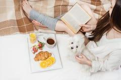Расслабленное счастливое домашнее время с любимчиком Стоковое фото RF