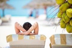 Расслабленные молодые женщины лежа на lounger пляжа около кокосовой пальмы Стоковое фото RF