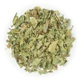Расслабляющая вербена травяного чая выходит 22479 стоковые изображения rf