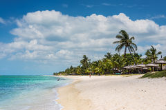 Расслабляющие праздники в тропическом рае Остров Маврикия Стоковое Изображение
