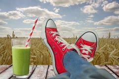 Расслабляющий ландшафт обозревая пшеничное поле с освежать Стоковое Фото