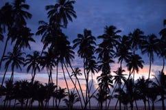 Расслабляющий заход солнца Стоковое Фото