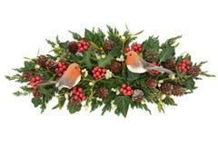 Растительность зимы с украшением Робина стоковая фотография rf