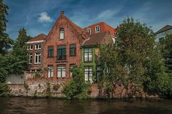 Растительность и кирпичные здания на canal& x27; край s в солнечном дне на Брюгге стоковые изображения rf