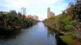 Растительность на банках Нила в Каире акции видеоматериалы