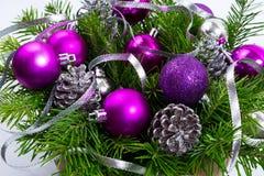 Растительность рождества с серебряными конусами яркого блеска и фиолетовым орнаментом Стоковые Фотографии RF