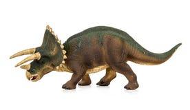 Растительноядные динозавров трицератопс Стоковые Изображения RF