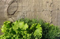 Растительность на деревянной предпосылке Стоковые Фото