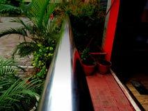 Растительность дома Стоковые Фотографии RF