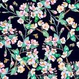 расти имеющейся черноты предпосылки голубой выходит картине вектор нашивок красной весны белая широкая Цветя ветви и пчелы акваре Стоковое Изображение RF
